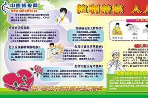 3月24日世界结核病防治日宣传板报