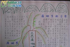 清明节的习俗手抄报作品