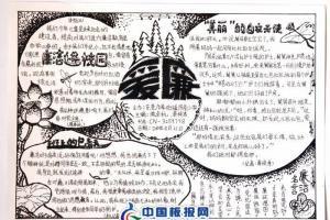爱廉手抄报版面设计图