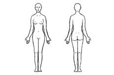 女性人体正反面简笔画图片