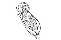 玉米简笔画_卡通玉米怎么画