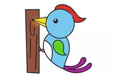 带颜色啄木鸟简笔画图片怎么画
