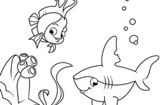 简笔画之珊瑚鱼和鲨鱼怎么画