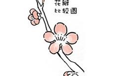 一枝梅花水彩简笔画图片怎么画