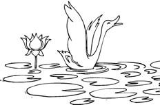 荷花和天鹅简笔画图片怎么画