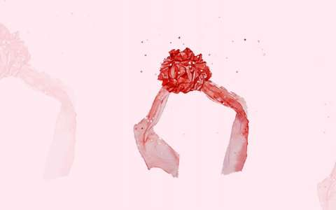 红绣球水彩图片