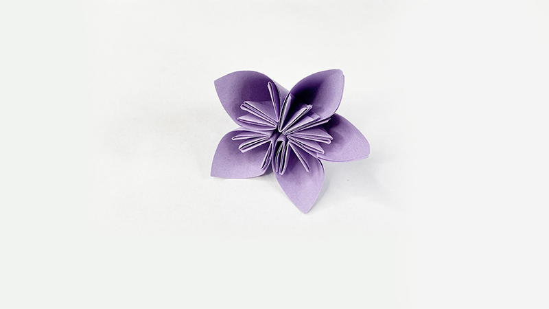 简单纸折花教程图片 小花朵如何折