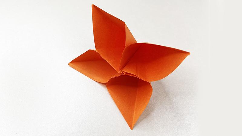 简易立体小花朵教程图片 立体小花朵是怎么折