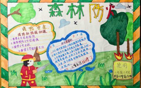 小学生森林防火安全手抄报图片简单漂亮