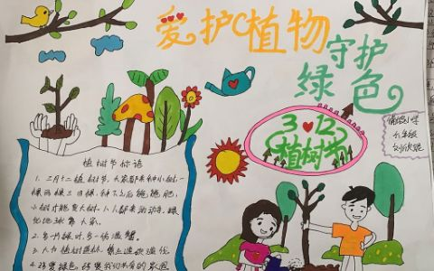 爱护植物守护绿色手抄报图片