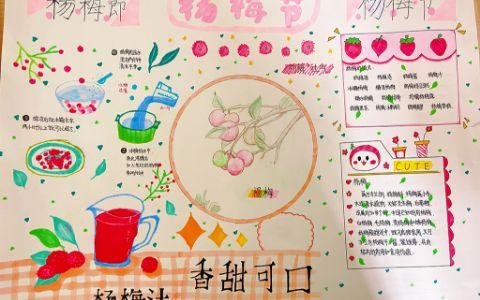 酸甜可口杨梅汁小学生手抄报图片