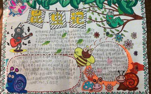 法布尔昆虫记手抄报图片