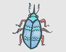 儿童简笔画甲壳虫怎么画好看 甲壳虫的画法