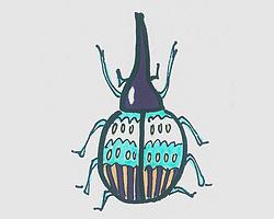 简笔画甲壳虫怎么画好看 可爱甲壳虫画法