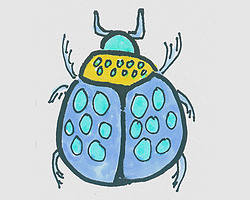 简笔画图片色彩瓢虫的画法步骤