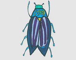 简笔画可爱甲虫的画法步骤图解