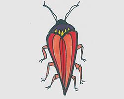儿童简笔画甲虫 可爱小甲虫的画法