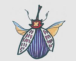 儿童简笔画图片瓢虫怎么画最简单 小瓢虫的画法