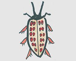 儿童简笔画色彩甲壳虫怎么画 小甲壳虫画法