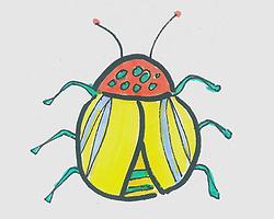 儿童简笔画色彩瓢虫的画法图解