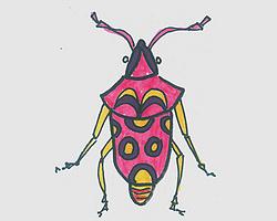儿童简笔画甲虫怎么画好看 一步一步教可爱甲虫画法