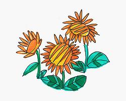 创意简笔画向日葵怎么画详细步骤 彩色简笔画