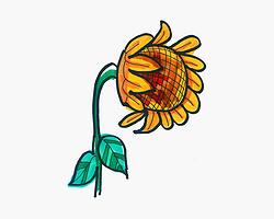 实用简笔画向日葵的画法图解 儿童彩色简笔画大全