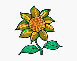 儿童1一9岁美术 好看简笔画向日葵怎么画